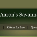 Aarons Savannahs
