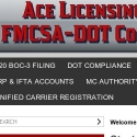 Ace Licensing And Permits