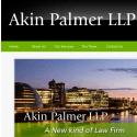 Akin Palmer