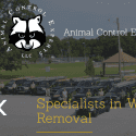Animal Control Experts reviews and complaints