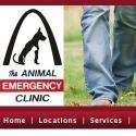 Animal Er center