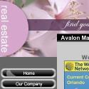 Avalon Management
