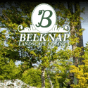 Belknap Landscape