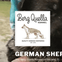 Berg Quella Kennel reviews and complaints