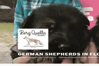 Berg Quella Kennel reviews and complaints