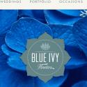 Blue Ivy Flowers