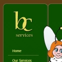 Borisova Cleaning Services