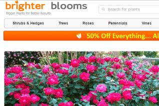 Brighter Blooms Nursery reviews and complaints