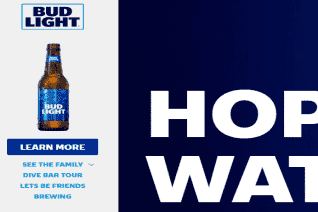 Bud Light reviews and complaints