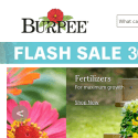 Burpee Seeds And Plants