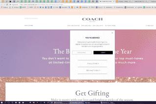 Coach Outlet reviews and complaints