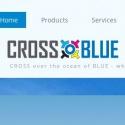 Cross Blue Printing