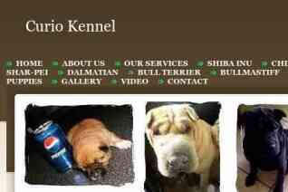 Curio Kennel reviews and complaints