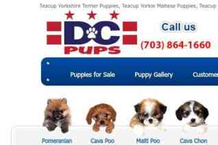 DcPups reviews and complaints