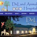 DeLand Animal Hospital