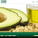 DMV EXPORT SALES LLC