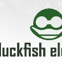 Duckfish Electronics reviews and complaints