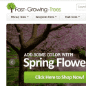 Fast Growing Trees