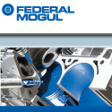 Federal Mogul reviews and complaints