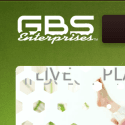Gbs Enterprises