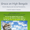 Grace On High Bengals reviews and complaints
