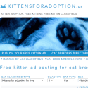 KittensForAdoption Us reviews and complaints
