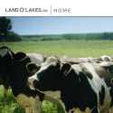 Land OLakes reviews and complaints