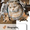 Leo Veterinary Care