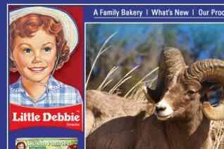 Little Debbie reviews and complaints