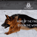 Mittelwest German Shepherds