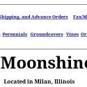 Moonshine Designs Nursery