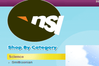 Nsi International reviews and complaints