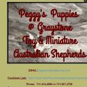 Peggys Puppies