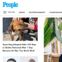 People Magazine reviews and complaints
