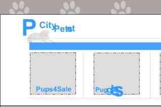 Pet City Pets reviews and complaints