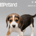Petland reviews and complaints