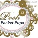 Posh Pocket Pups reviews and complaints