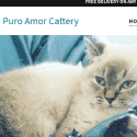 Puro Amor Cattery
