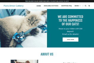 Puro Amor Cattery reviews and complaints
