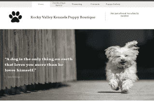 Rocky Valley Kennels Puppy Boutique reviews and complaints