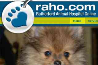 Rutherford Animal Hospital reviews and complaints