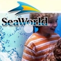 Seaworld reviews and complaints