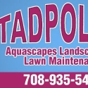 Tadpoles Aquascapes and Lawn service