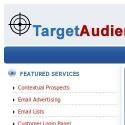 Target Audience Online