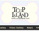 Tcup Island Puppies