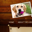 The Lodge For Dogs reviews and complaints