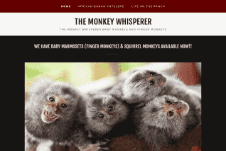 The Monkey Whisperer reviews and complaints