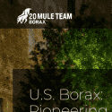 US Borax reviews and complaints