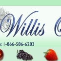 Willis Orchard Company