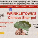 Wrinkletowns Chinese Shar Pei reviews and complaints